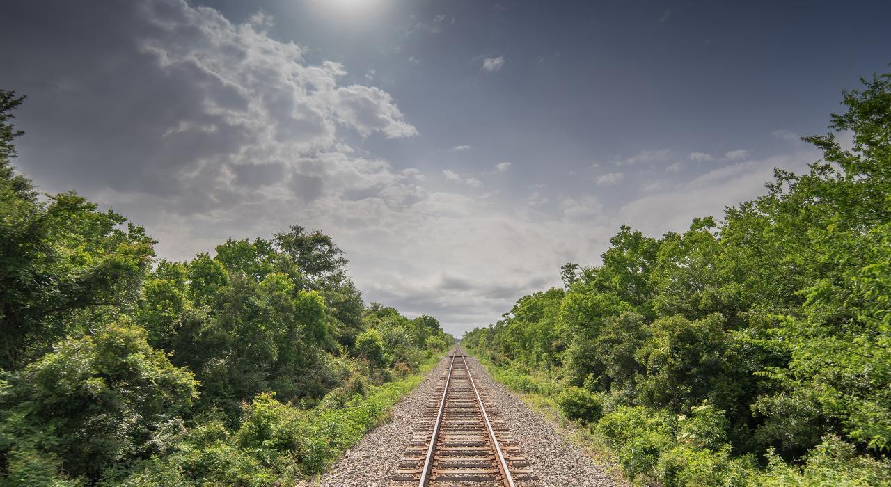 A Vida e a Viagem de Trem