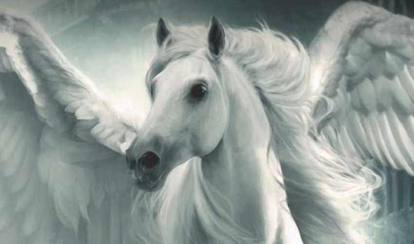 Lenda do Cavalo